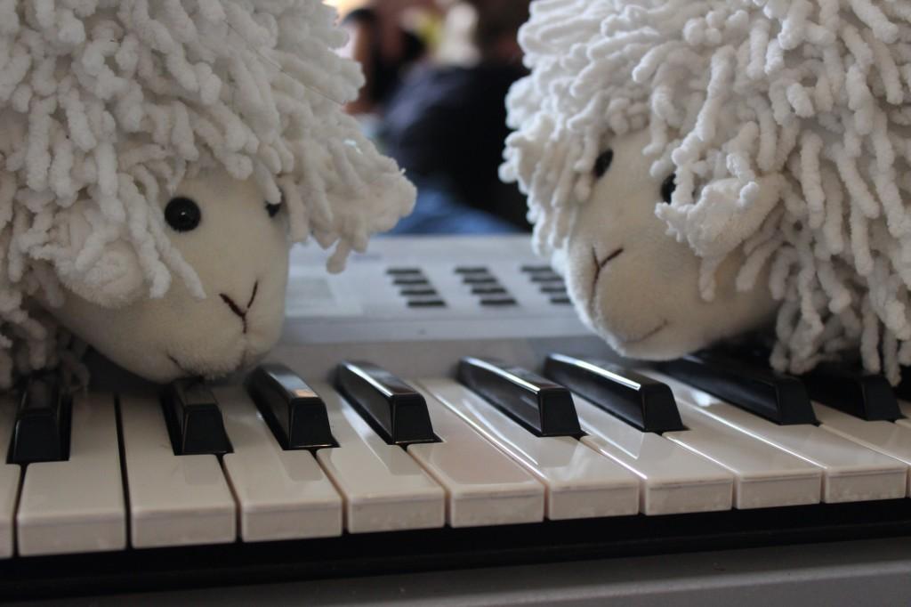 Schapen op Piano